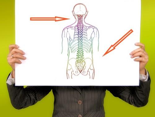 Mit elektrisch verstellbaren Schreibtischen Rückengesundheit fördern